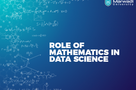 Role Of Mathematics in Data Science Infographic