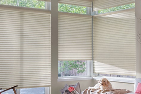 Roller Shades Infographic