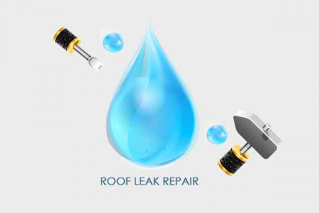 Roof Leak Repair Infographic Infographic