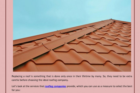 Rooftop Solutions Provided by Roofing Companies Infographic