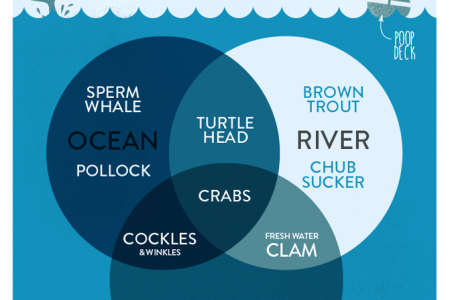 Rude Seafood Infographic