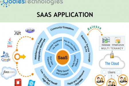 SaaS Application Providers Infographic