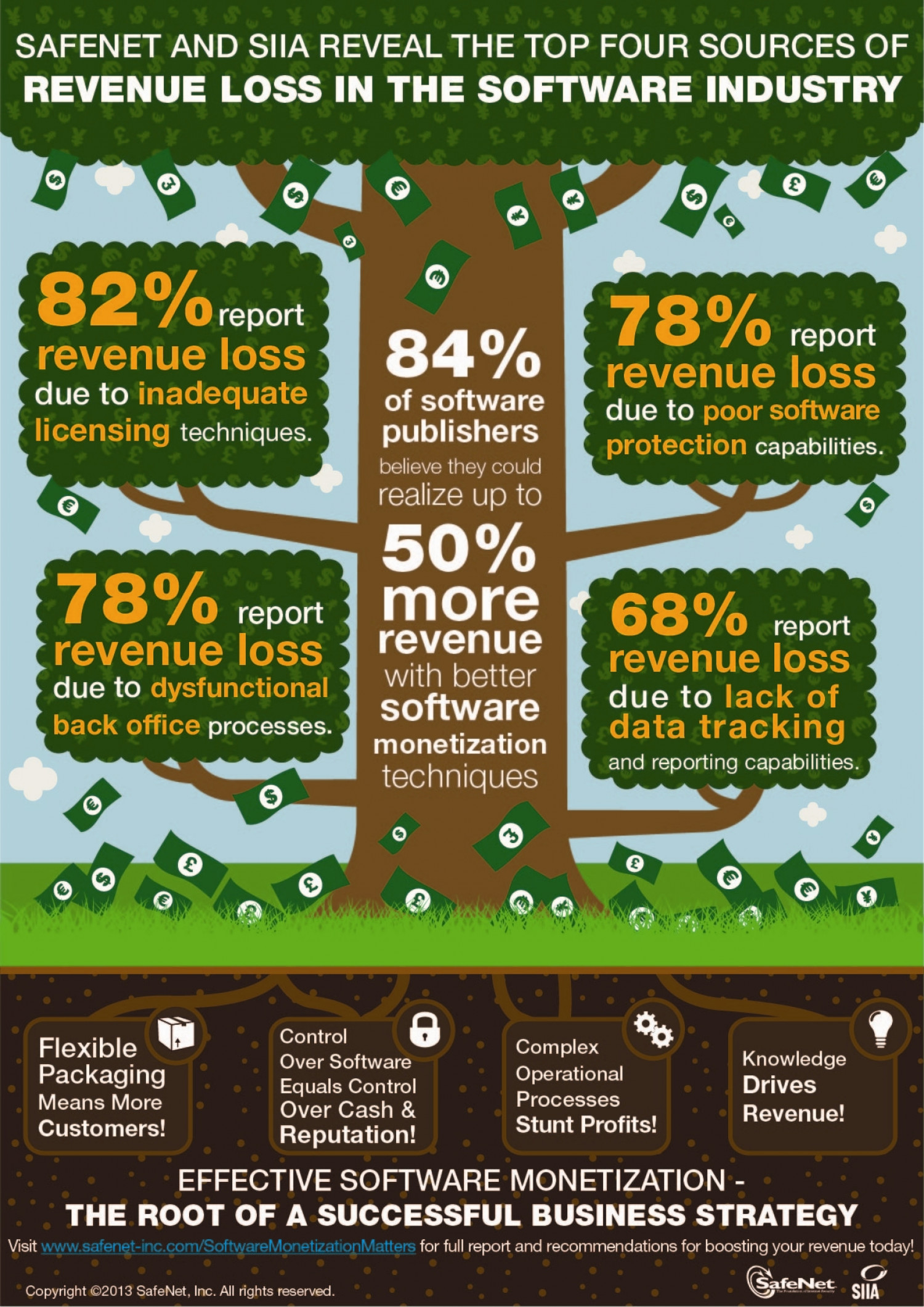 SafeNet and SIIA Software Monetization Survey Infographic Infographic
