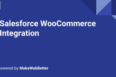 Salesforce WooCommerce Integration Infographic