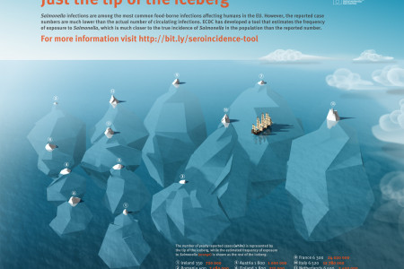 Salmonella - just the tip of the iceberg Infographic