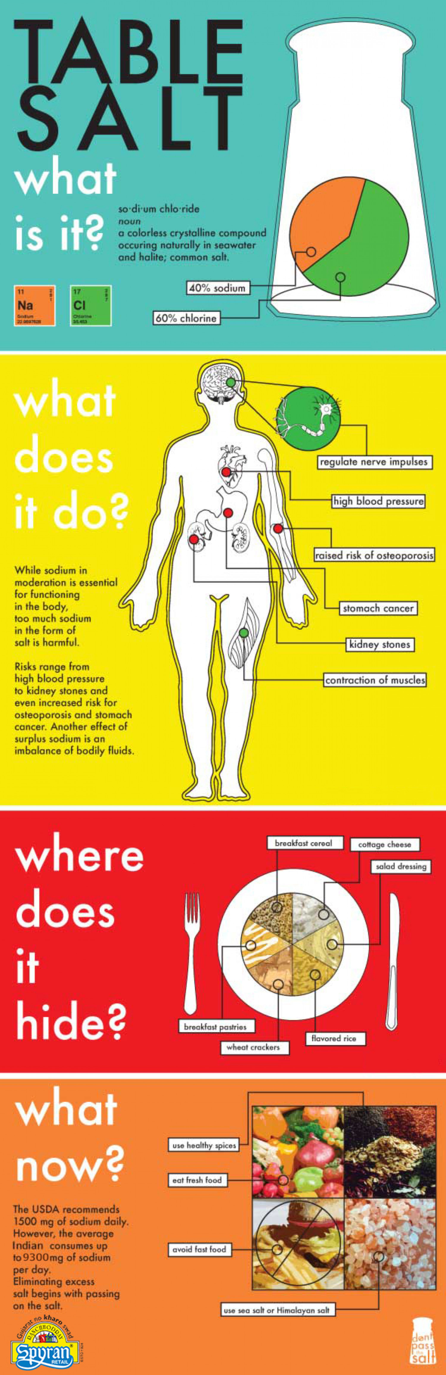 Table Salte-What is it? Infographic