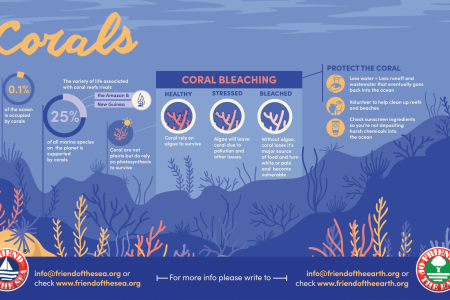 Save Corals-Coral Bleaching Infographic