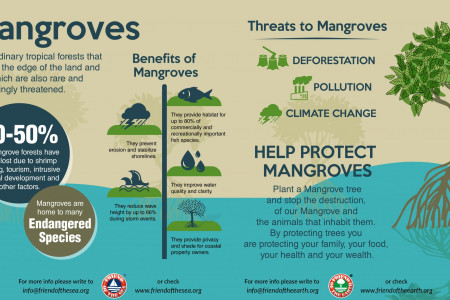 Save Mangroves Save Oceans Infographic