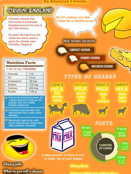 Say Cheese Infographic
