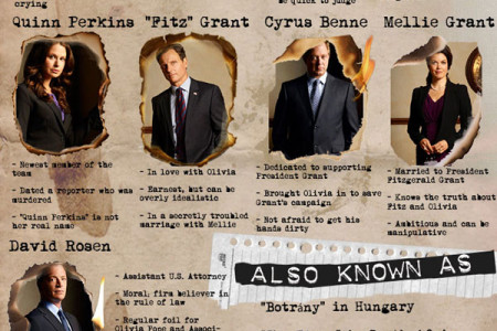 Scandal TV Show Info & Trivia Infographic