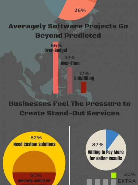 Scope of Custom Software Development Infographic
