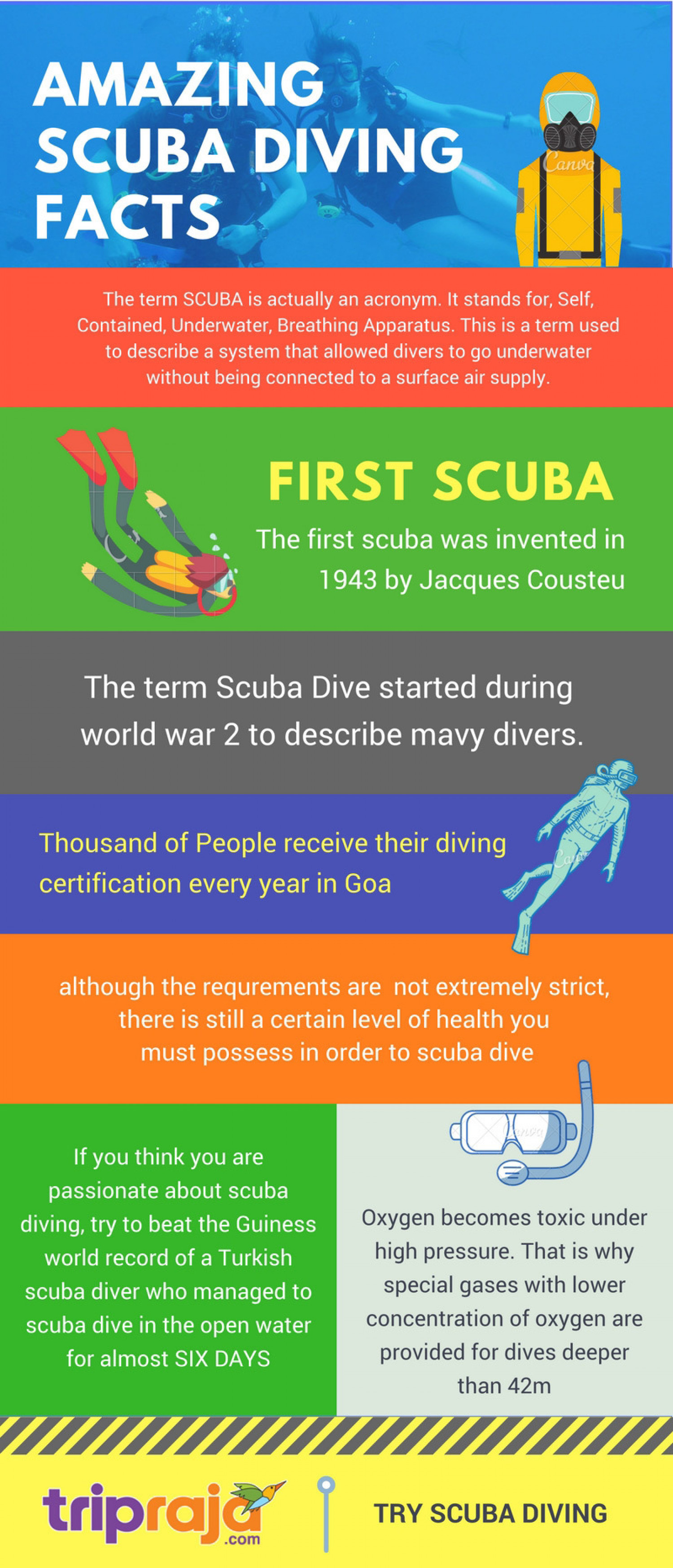 Scuba Diving FACTS Infographic