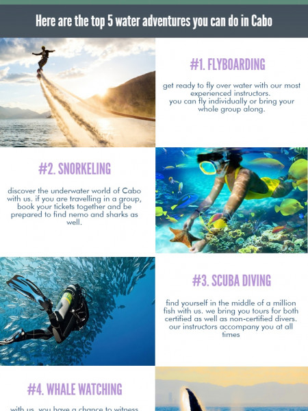 Scuba Diving in Cabo Pulmo Infographic