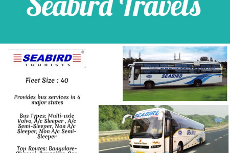 Seabird Travels Infographic