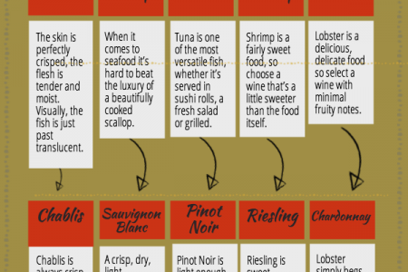 Seafood and Wine: Recommended Pairings Infographic