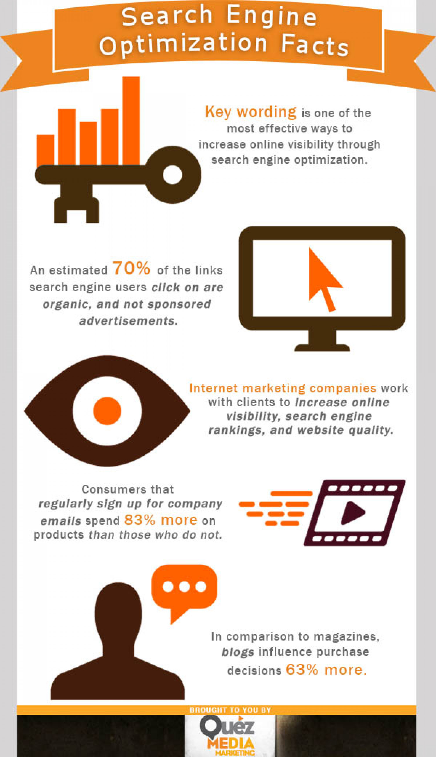 Search Engine Optimization Facts Infographic