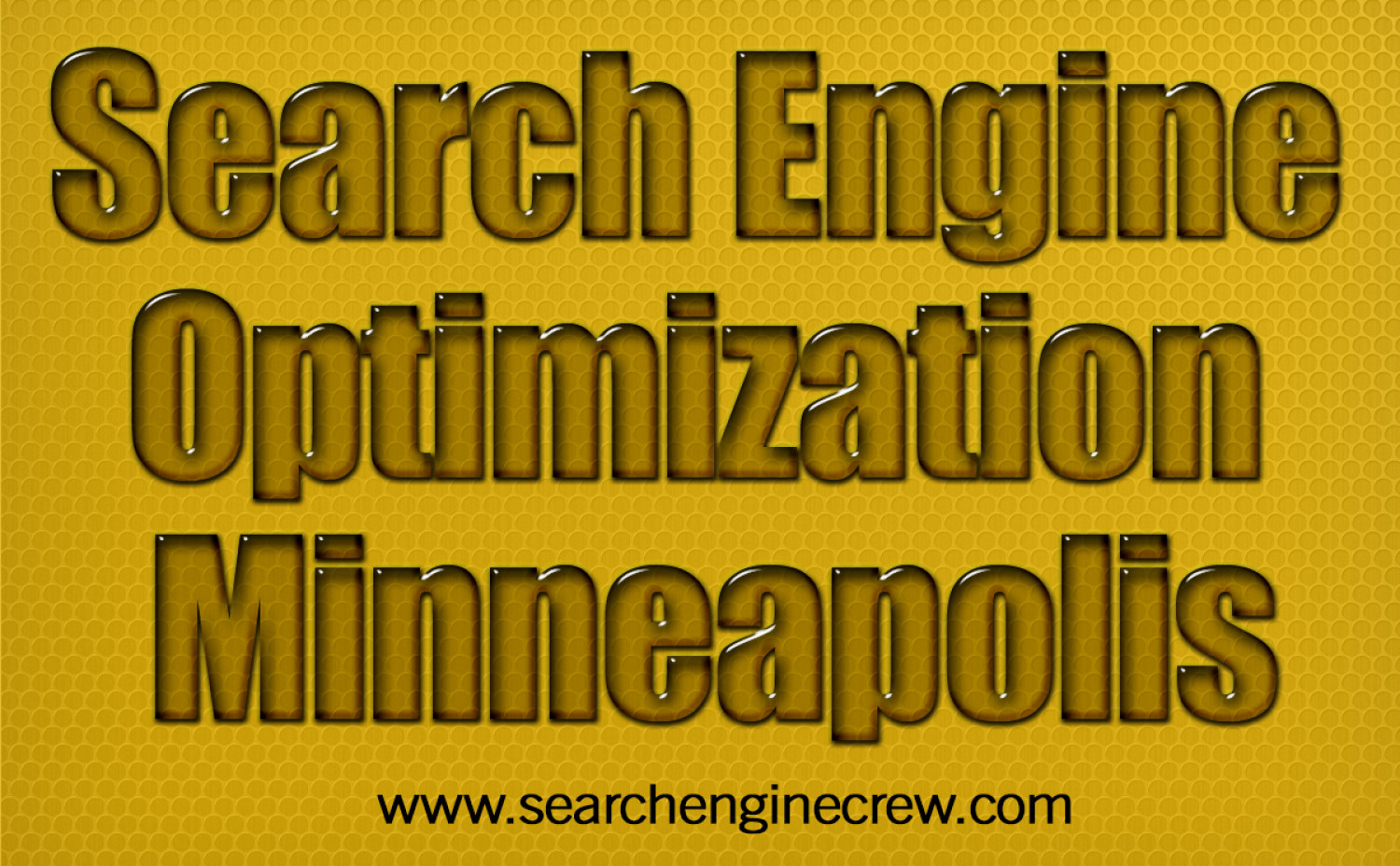 Search Engine Optimization Minneapolis Infographic