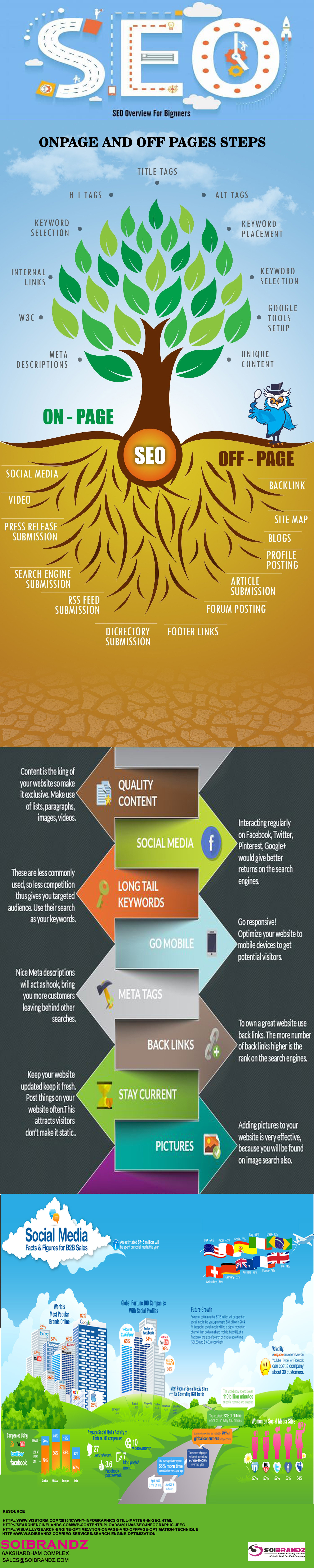 Search Engine Optimization Overview - Beginners Guide  Infographic