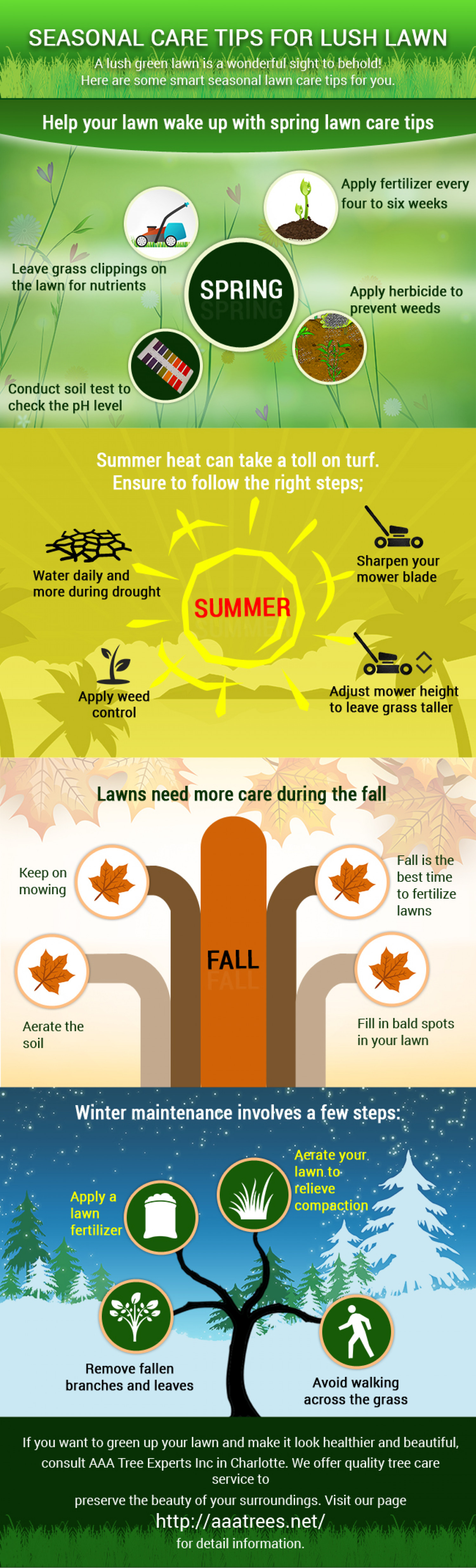 Seasonal Care Tips for Lush Lawn Infographic