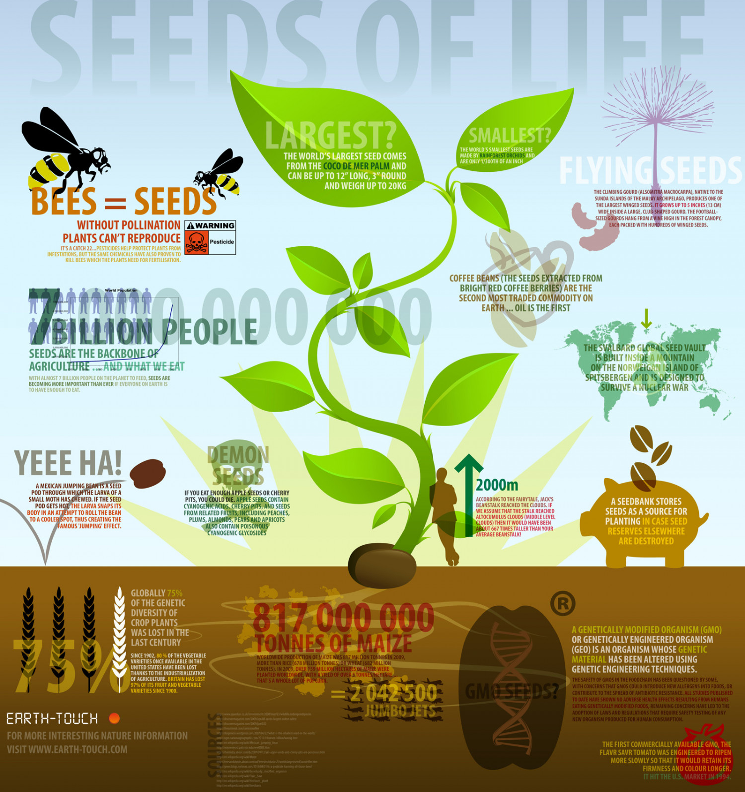 Quotes About Planting Seeds For Life Seeds Of Life  Visual.ly