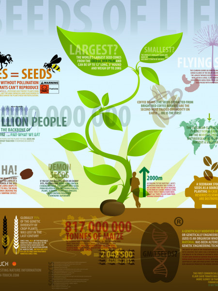 Seeds of Life Infographic