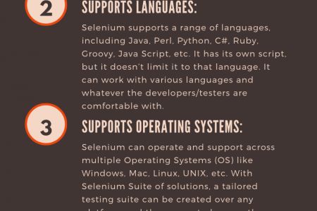 selenium training in bangalore Infographic