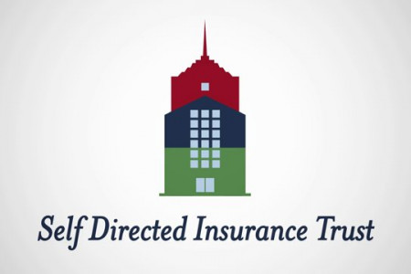 Self Directed Insurance Trust Infographic