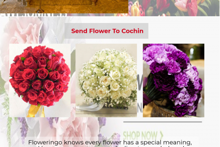 Send Flowers To Cochin Infographic