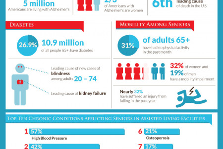 Senior Health Care Services, Aging Gracefully with Quality Care  Infographic