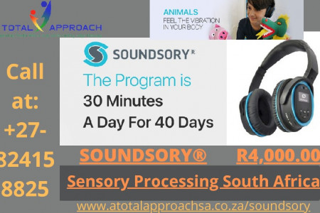 Sensory Processing South Africa Infographic