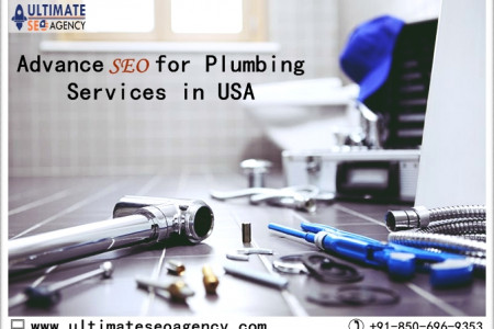 SEO Company for Plumbing Services California Infographic