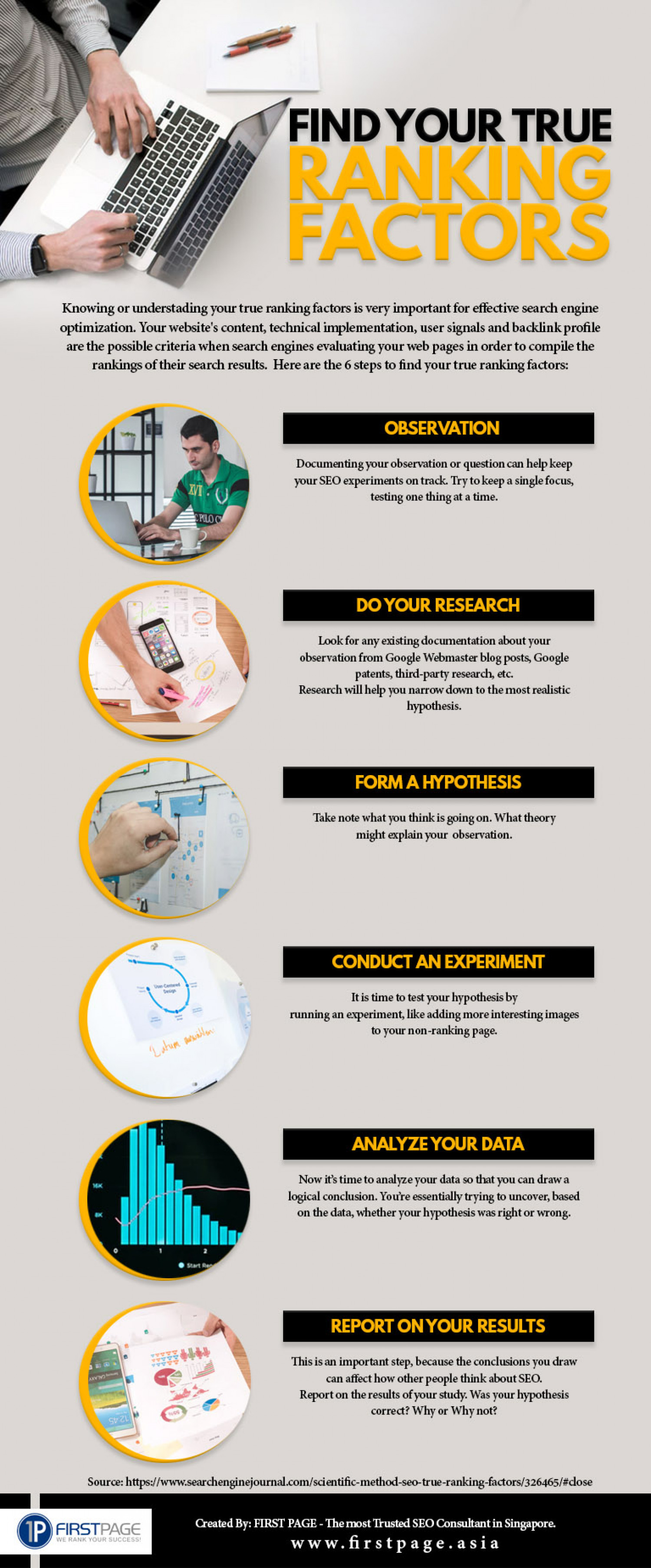 SEO Consultant | Find Your True Ranking Factors Infographic