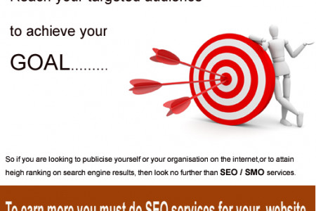 SEO Services Company Pune Technnovation Labs Infographic