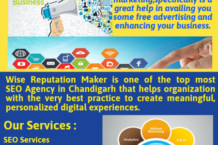 SEO Services in Chandigarh Infographic