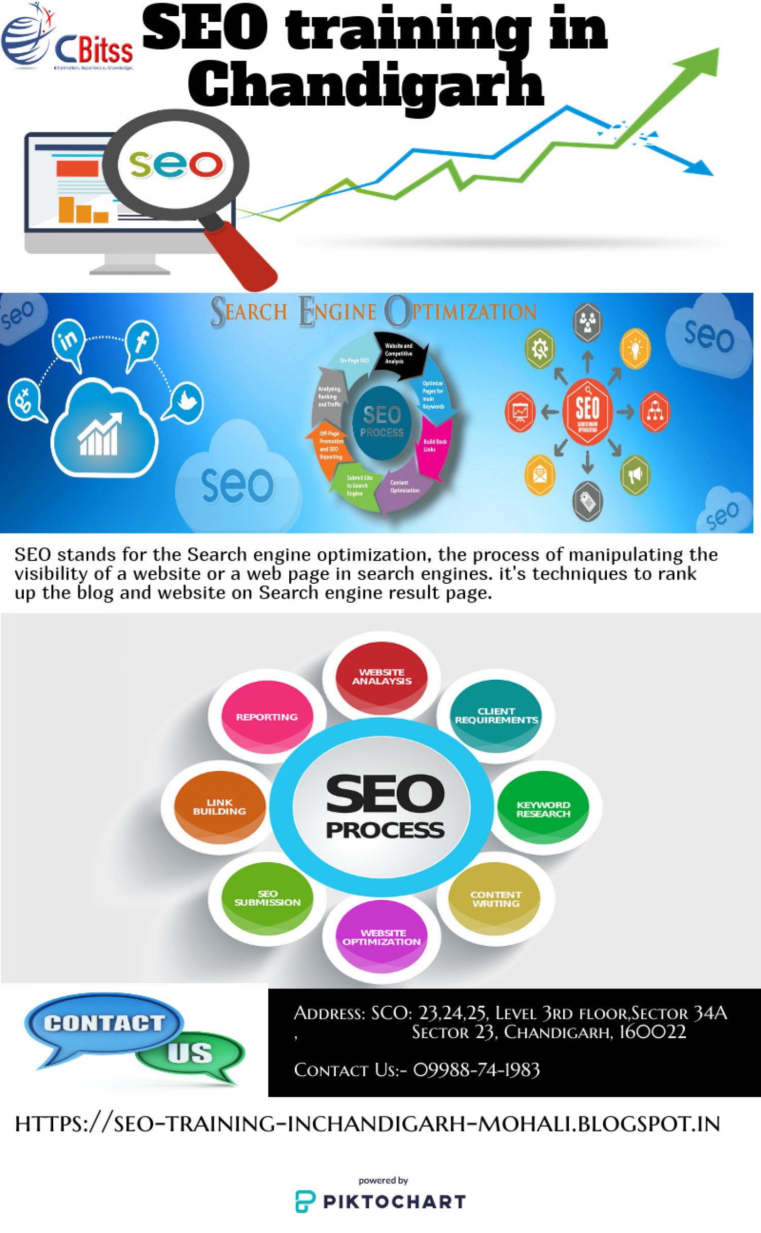 SEO training in Chandigarh Infographic