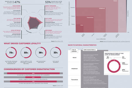 Serving customer experience Infographic