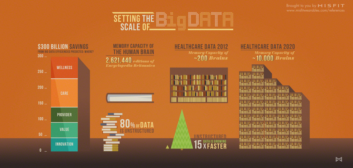 Setting the Scale of Big Data Infographic