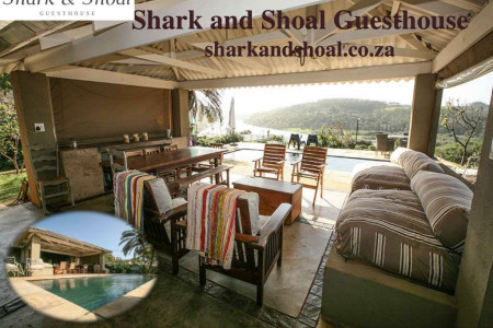Shark and Shoal Guesthouse Infographic