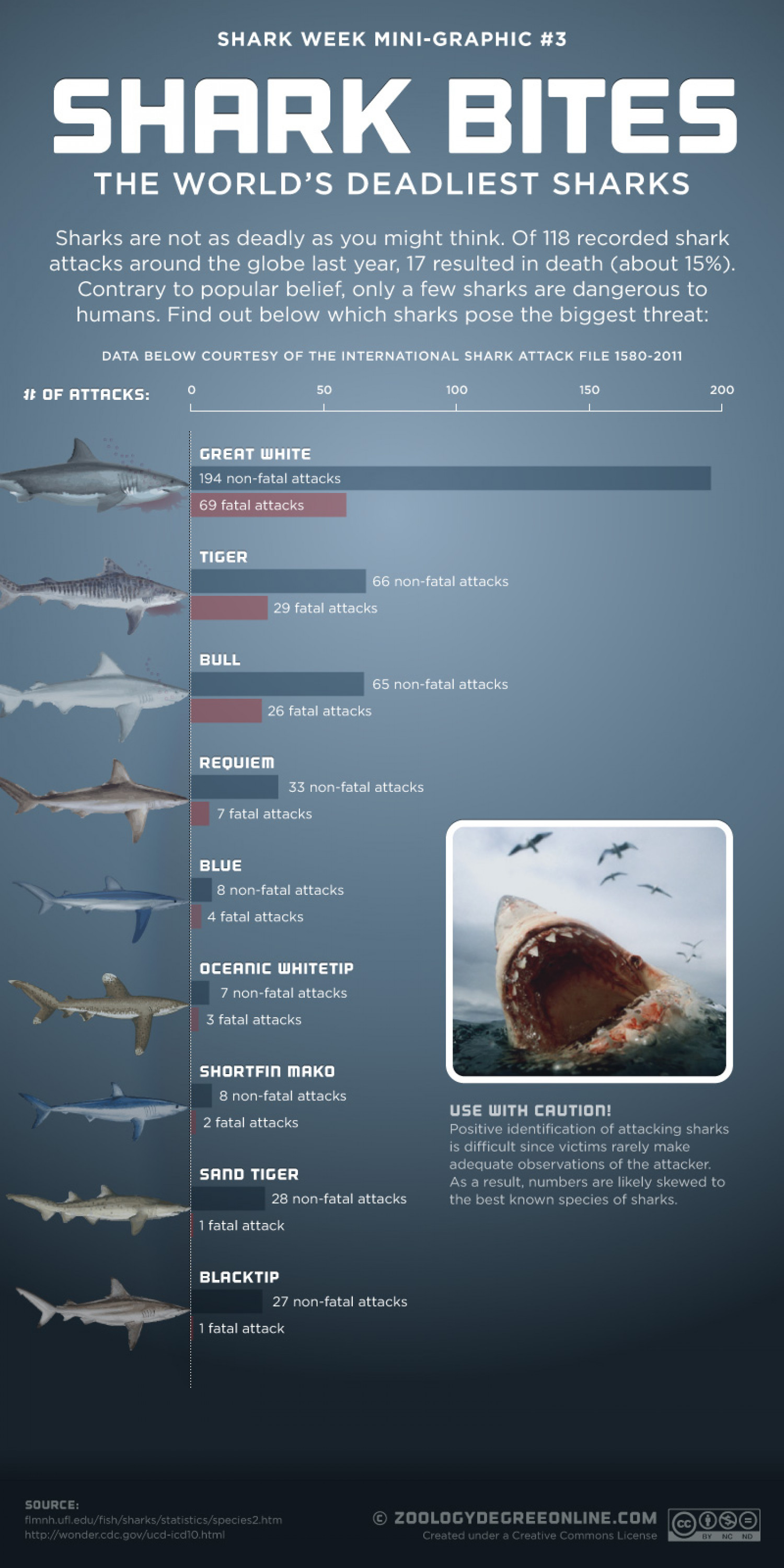 Shark Bites - The World's Deadliest Sharks Infographic