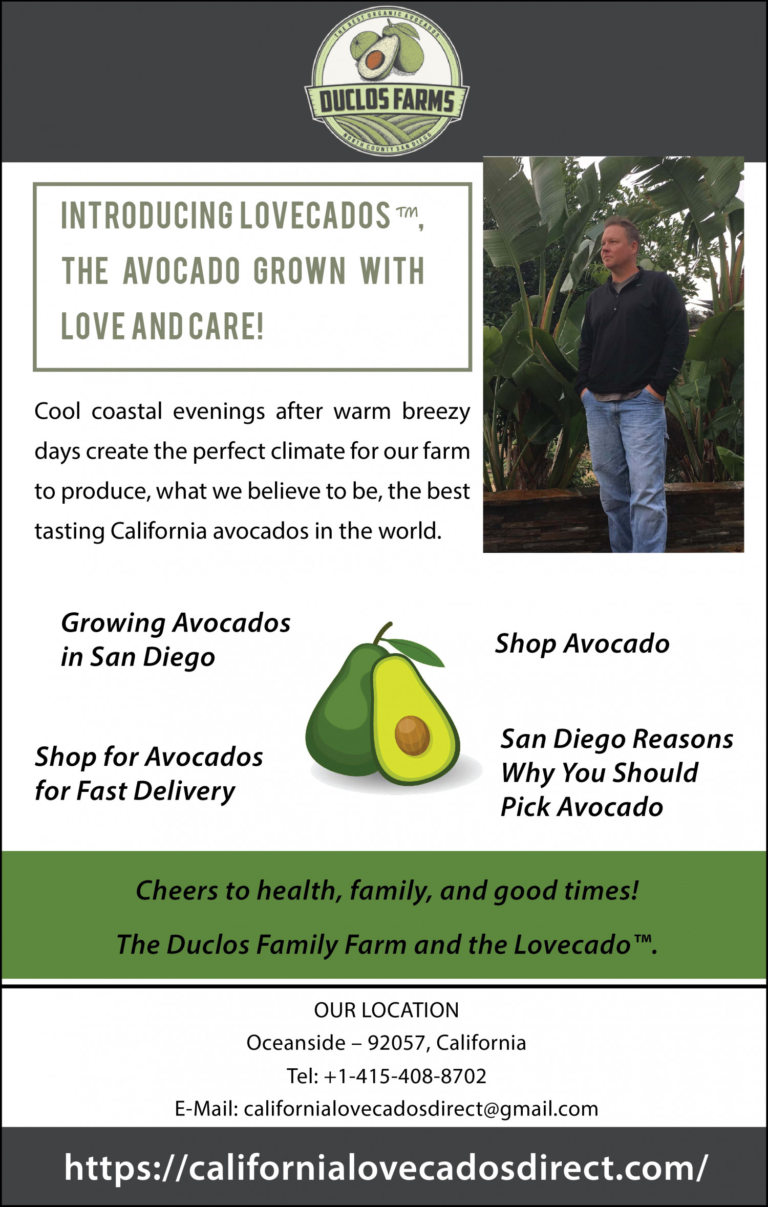 Shop Avocados for Fast Delivery Infographic