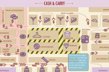 Shopper Profile Research and Analysis Infographic