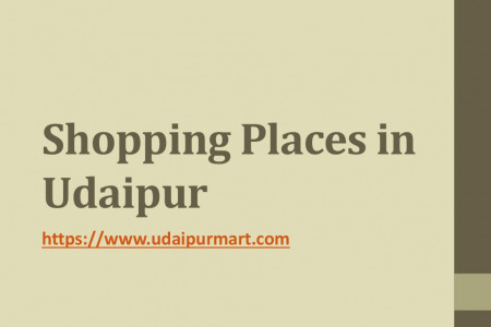 Shopping Places in Udaipur Infographic