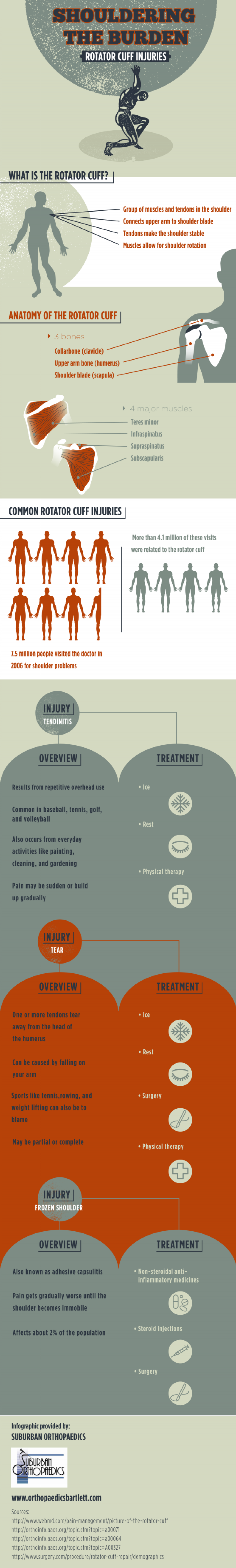 Shouldering the Burden: Rotator Cuff Injuries Infographic