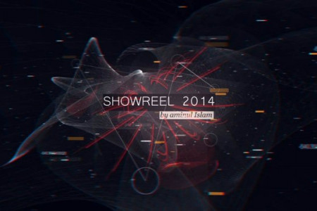 Showreel 2014 Infographic