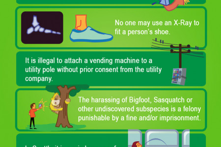 Silly Laws in Washington [infographic] Infographic