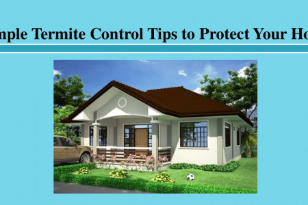 Simple Termite Control Tips to Protect Your Home Infographic