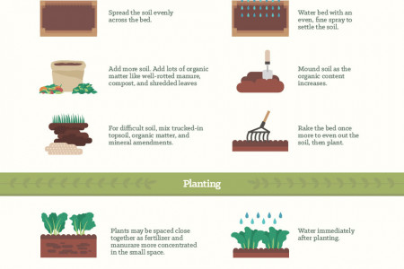 Simple Vegetable Garden Tips for Every Size Garden Infographic