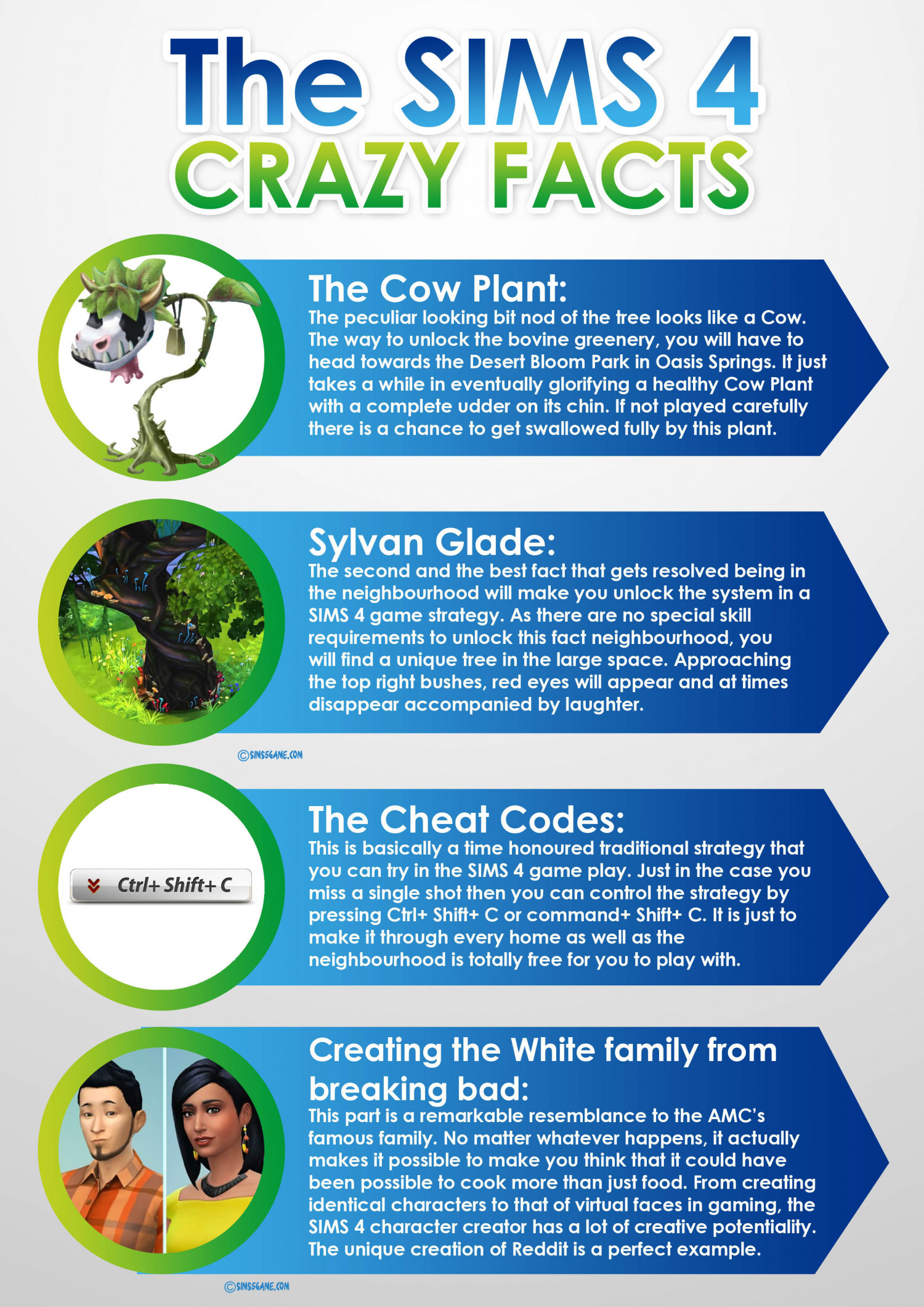 SIMS 4 Crazy Facts Infographic