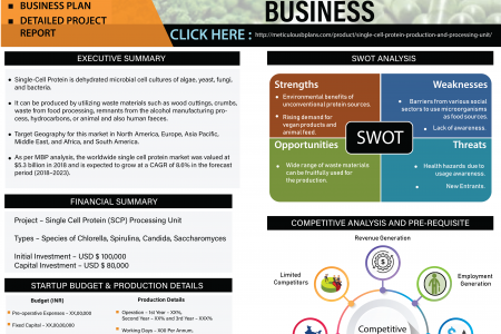 Single Cell Protein (SCP) Production And Processing Unit Infographic