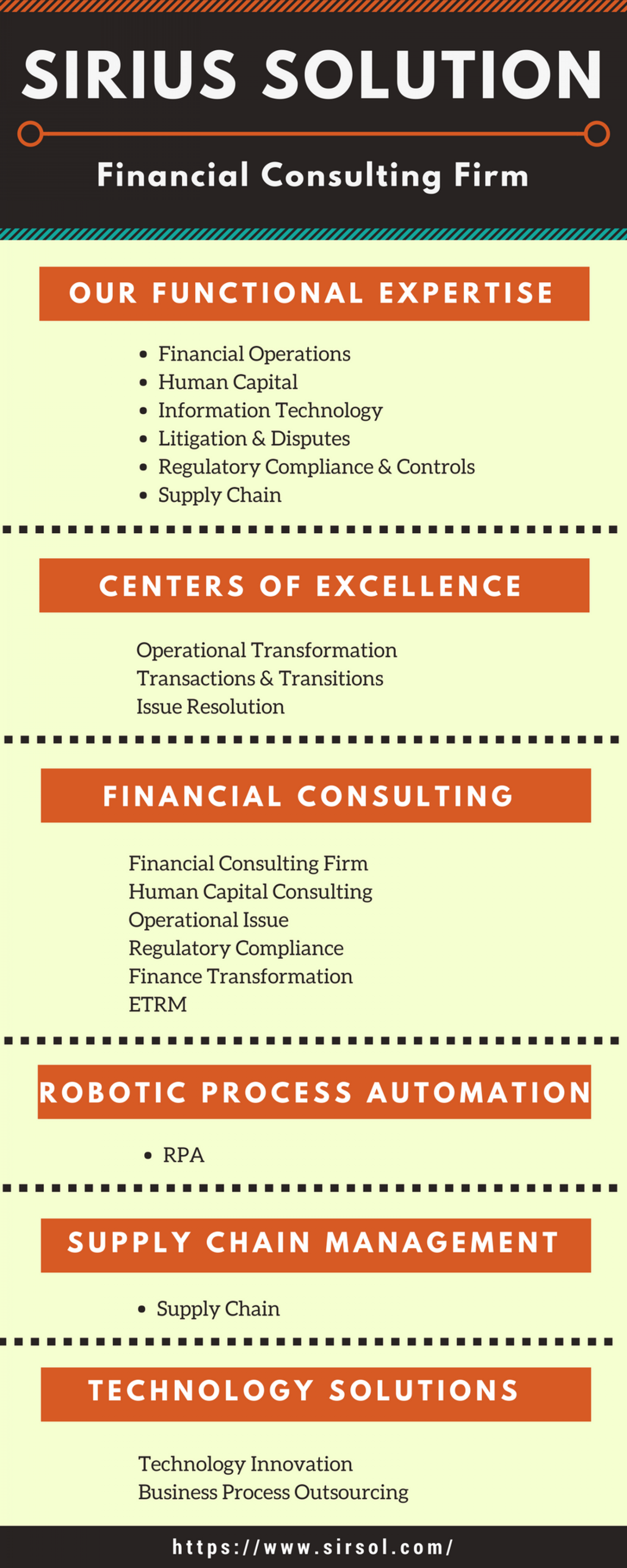 Sirius Solution - Financial Consulting Firm Infographic